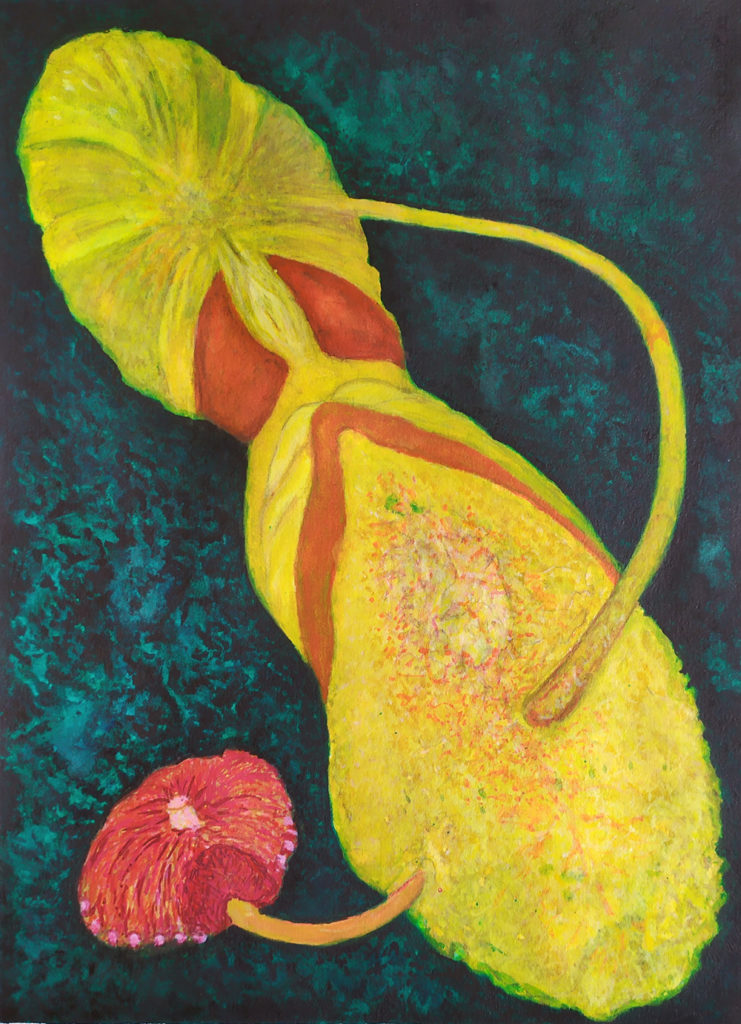 Lung Flower Final 741x1024 - Schloss Tegal Art Gallery - Works by RL Schneider